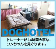 ドッグホテル